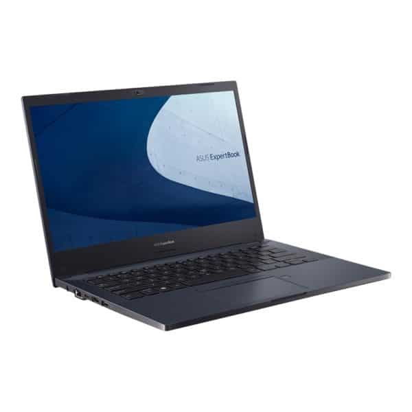 Asus ExpertBook P2451 Details & Overview